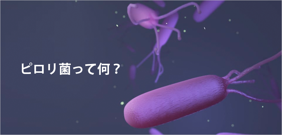 ピロリ菌って何?